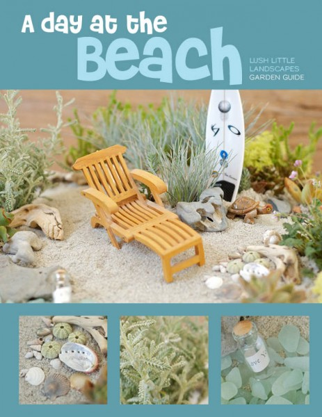 A Day at the Beach Miniature Garden Project Guide | Lush Little Landscapes