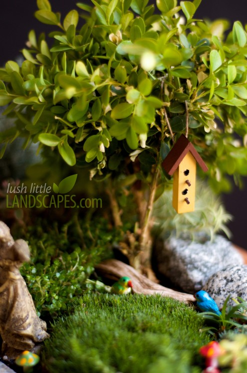 Miniature Garden Tea Party | Lush Little Landscapes