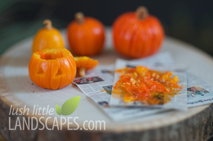 Miniature Pumpkin Carving at Lush Little Landscapes