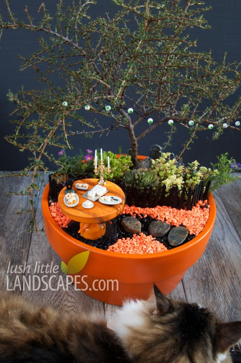 Halloween Miniature Fairy Garden at Lush Little Landscapes - Miniature Food, Spooky Lights and glowing effects, pumpkin patch and mini pumpkin carving with cat for scale